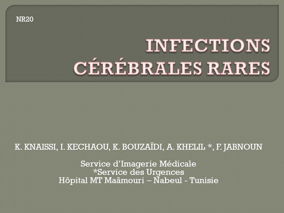 K. KNAISSI, I. KECHAOU, K. BOUZAÏDI, A. KHELIL *, F. JABNOUN Service dImagerie Médicale *Service des Urgences Hôpital MT Maâmouri – Nabeul - Tunisie N