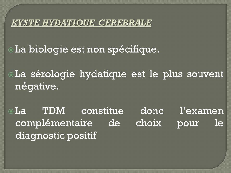La biologie est non spécifique. La sérologie hydatique est le plus souvent négative. La TDM constitue donc lexamen complémentaire de choix pour le dia