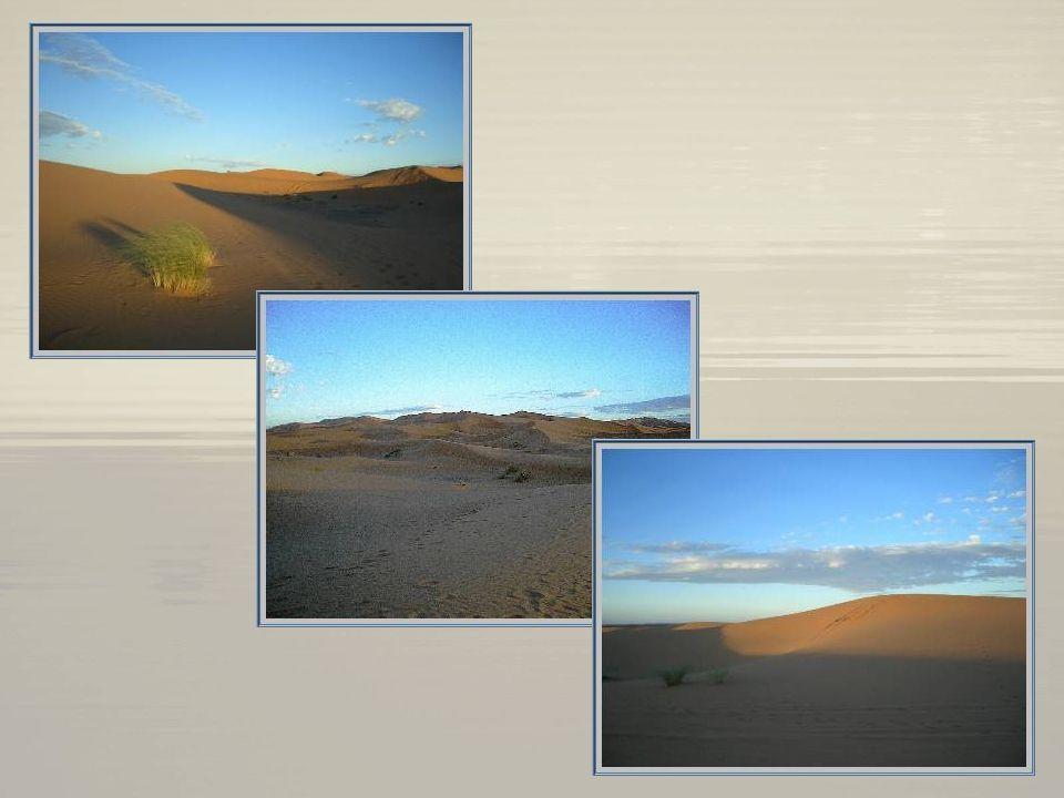 Dans le Tafilalet, se trouvent les dunes grandioses de Merzouga, lensemble le plus vaste de tout le sud marocain : près de 40 km de long et jusquà 150