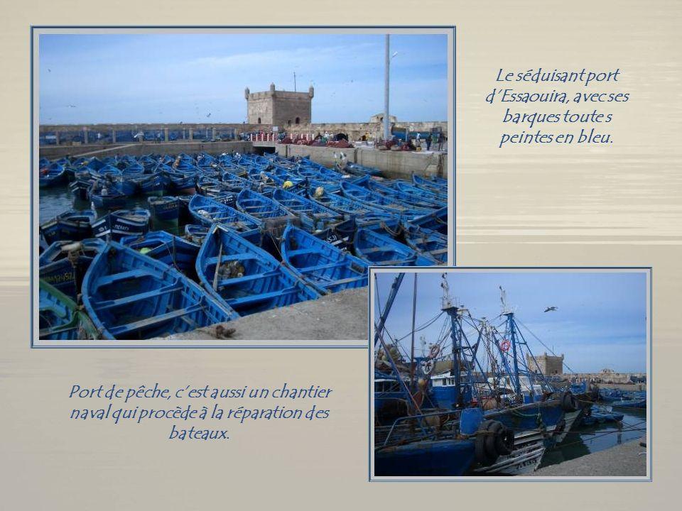 Après un tour dAgadir, cest Essaouira, lancienne Mogador des Français qui retiendra lattention. Cest une ville charmante de 70 000 habitants, dont le