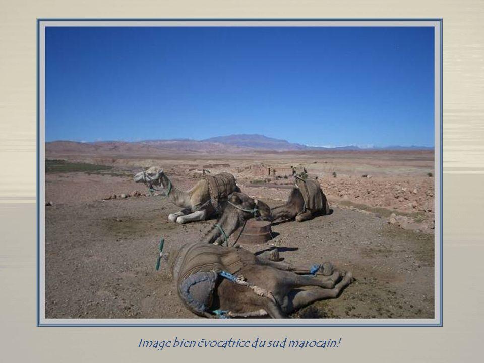 Un arrêt incontournable : la casbah dAït Benhaddou, dont les origines remontent au XIIe siècle. Ce ksar est classé au patrimoine de lhumanité par lUNE