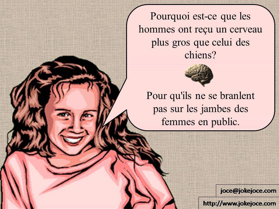 Pourquoi est-ce que les hommes ont reçu un cerveau plus gros que celui des chiens? Pour qu'ils ne se branlent pas sur les jambes des femmes en public.