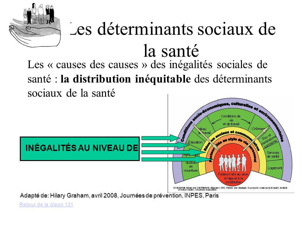 Les déterminants sociaux de la santé Les « causes des causes » des inégalités sociales de santé : la distribution inéquitable des déterminants sociaux