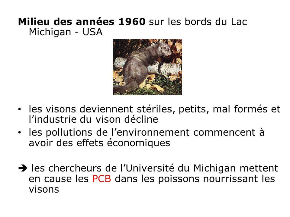 Milieu des années 1960 sur les bords du Lac Michigan - USA les visons deviennent stériles, petits, mal formés et lindustrie du vison décline les pollutions de lenvironnement commencent à avoir des effets économiques les chercheurs de lUniversité du Michigan mettent en cause les PCB dans les poissons nourrissant les visons