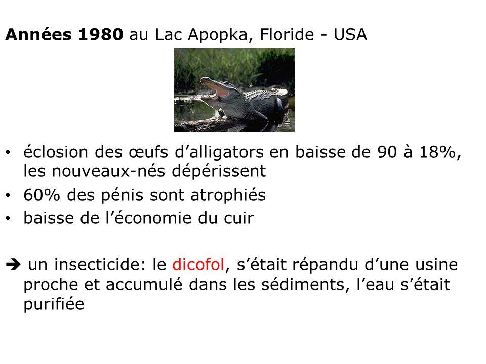 Années 1980 au Lac Apopka, Floride - USA éclosion des œufs dalligators en baisse de 90 à 18%, les nouveaux-nés dépérissent 60% des pénis sont atrophiés baisse de léconomie du cuir un insecticide: le dicofol, sétait répandu dune usine proche et accumulé dans les sédiments, leau sétait purifiée