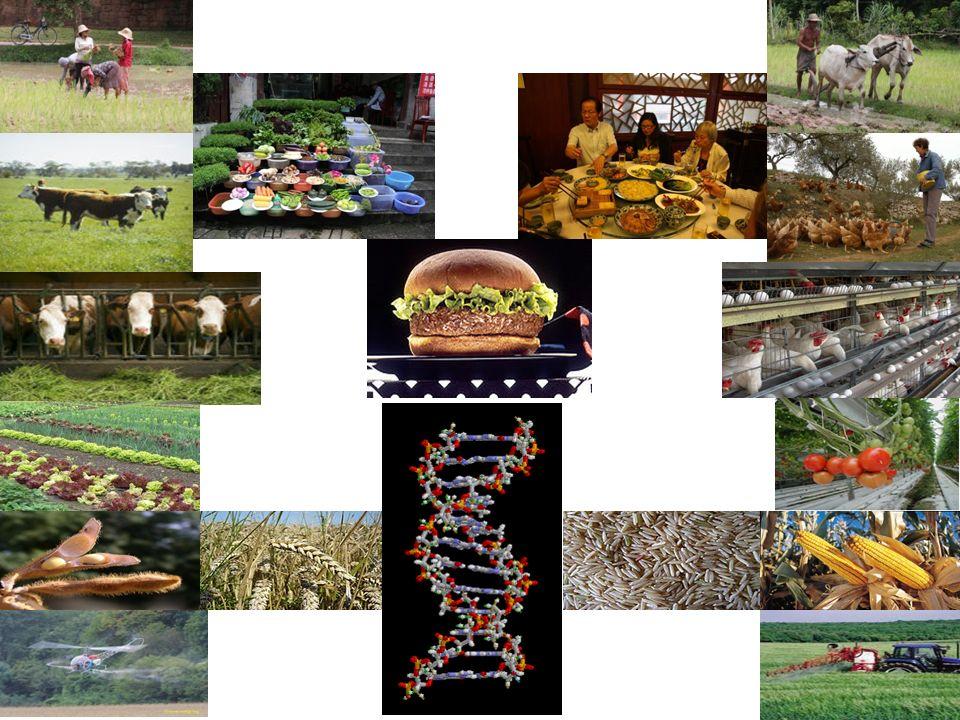 Pathologies environnementales liées à l inhibition de la communication cellulaire Biodiversité 36