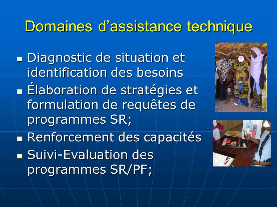 Domaines dassistance technique Diagnostic de situation et identification des besoins Diagnostic de situation et identification des besoins Élaboration