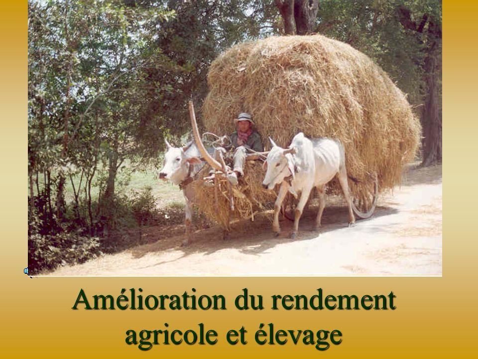 Meilleure santé des Villageois