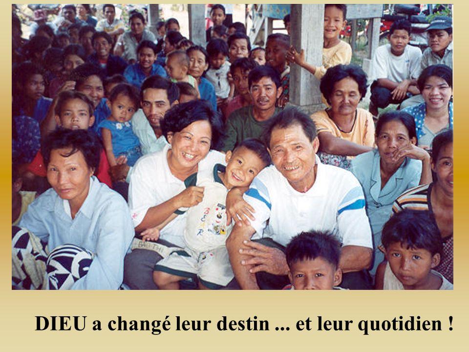 Cest lheure de la moisson au Cambodge