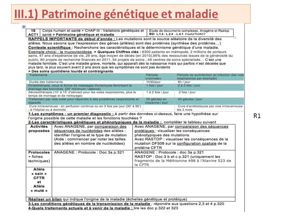 III.1) Patrimoine génétique et maladie R1