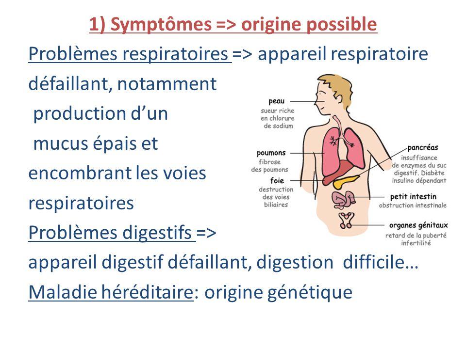 1) Symptômes => origine possible Problèmes respiratoires => appareil respiratoire défaillant, notamment production dun mucus épais et encombrant les v