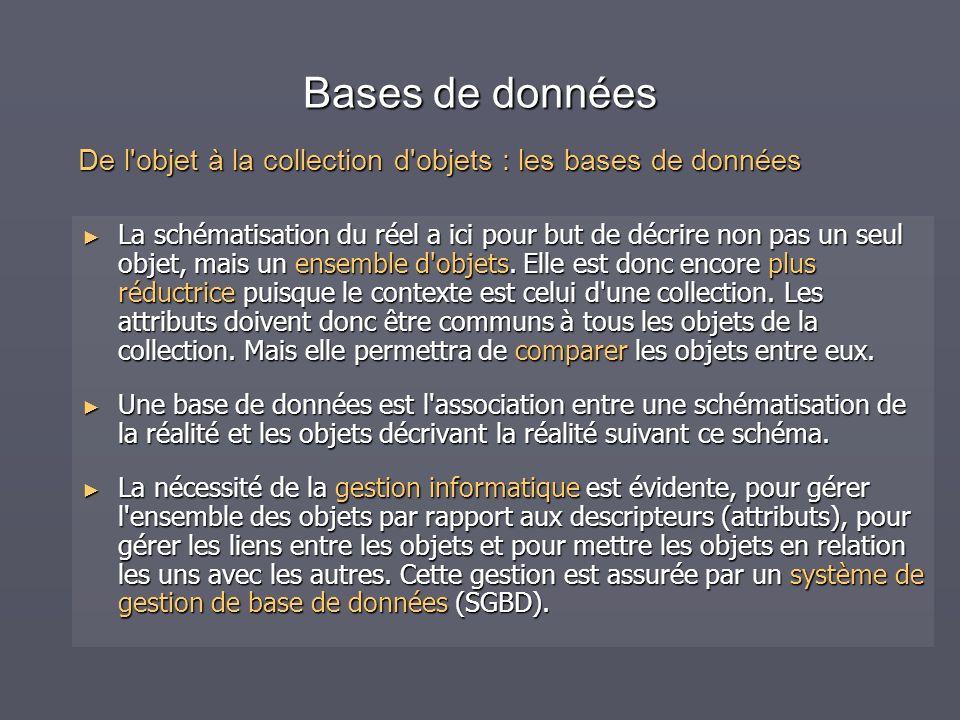 Bases de données La schématisation du réel a ici pour but de décrire non pas un seul objet, mais un ensemble d'objets. Elle est donc encore plus réduc