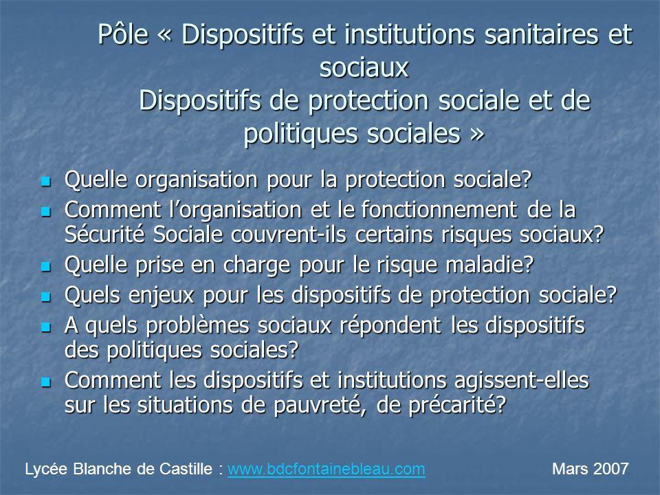 Pôle « Dispositifs et institutions sanitaires et sociaux Dispositifs de protection sociale et de politiques sociales » Quelle organisation pour la protection sociale.