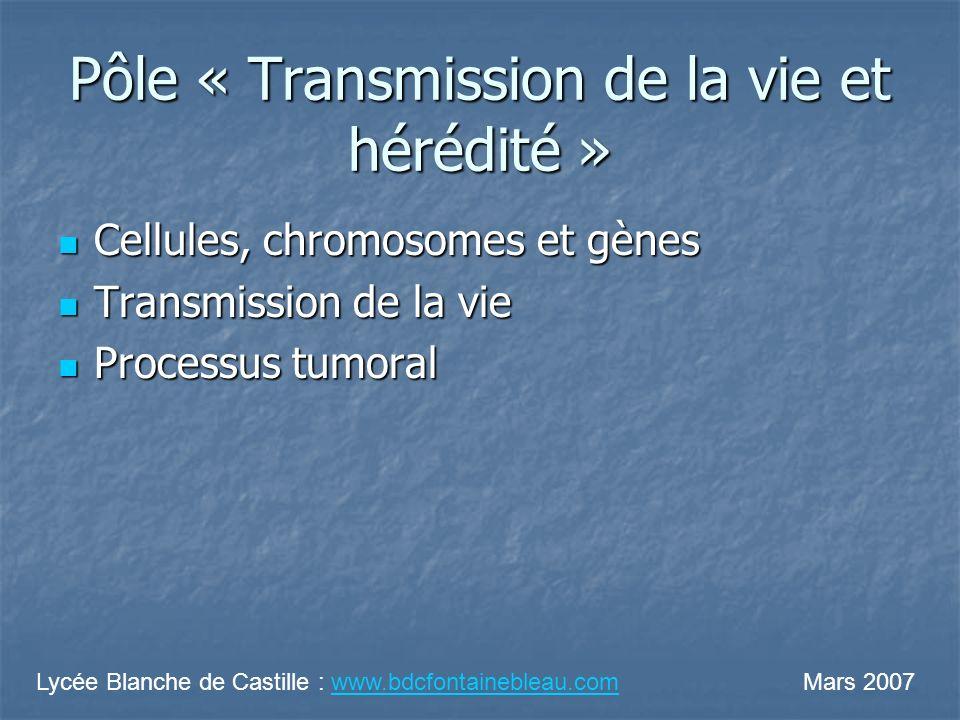 Pôle « Transmission de la vie et hérédité » Cellules, chromosomes et gènes Cellules, chromosomes et gènes Transmission de la vie Transmission de la vi