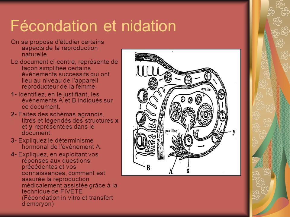 Fécondation et nidation On se propose d étudier certains aspects de la reproduction naturelle.
