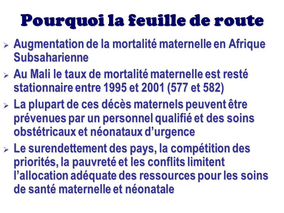 Pourquoi la feuille de route Dans le but de soutenir les pays dAfrique dans leurs efforts pour atteindre les OMD, les principaux partenaires au développement dans le domaine de la santé ont élaboré une Feuille de Route Régionale pour accélérer la réduction de la mortalité maternelle et néonatale en Afrique Dans le but de soutenir les pays dAfrique dans leurs efforts pour atteindre les OMD, les principaux partenaires au développement dans le domaine de la santé ont élaboré une Feuille de Route Régionale pour accélérer la réduction de la mortalité maternelle et néonatale en Afrique Suite à lengagement pris par les chefs détats de lUA, le Mali a adapté cette feuille de route à son contexte Suite à lengagement pris par les chefs détats de lUA, le Mali a adapté cette feuille de route à son contexte