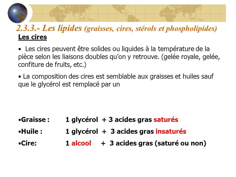 2.3.3.- Les lipides (graisses, cires, stérols et phospholipides) Les cires Les cires peuvent être solides ou liquides à la température de la pièce sel