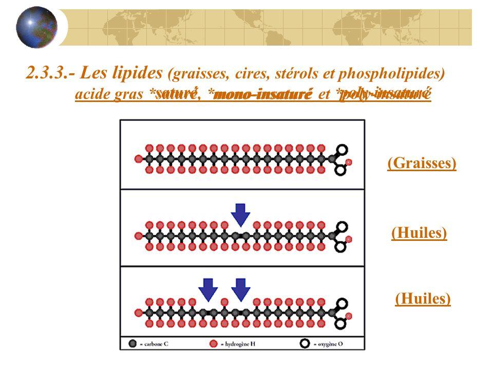2.3.3.- Les lipides (graisses, cires, stérols et phospholipides) acide gras *saturé, *mono-insaturé et *poly-insaturé (Graisses) (Huiles) saturé mono-