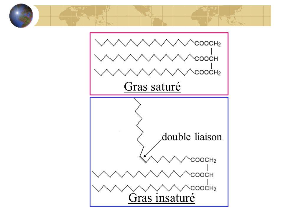 Gras saturé Gras insaturé double liaison