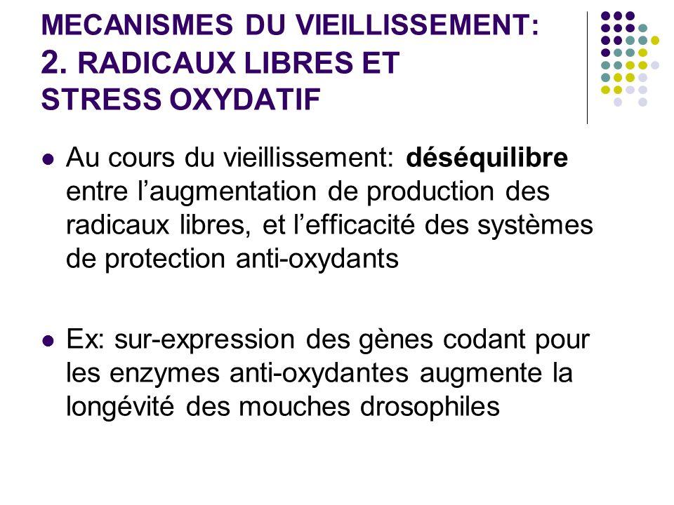 MECANISMES DU VIEILLISSEMENT: 2. RADICAUX LIBRES ET STRESS OXYDATIF Au cours du vieillissement: déséquilibre entre laugmentation de production des rad