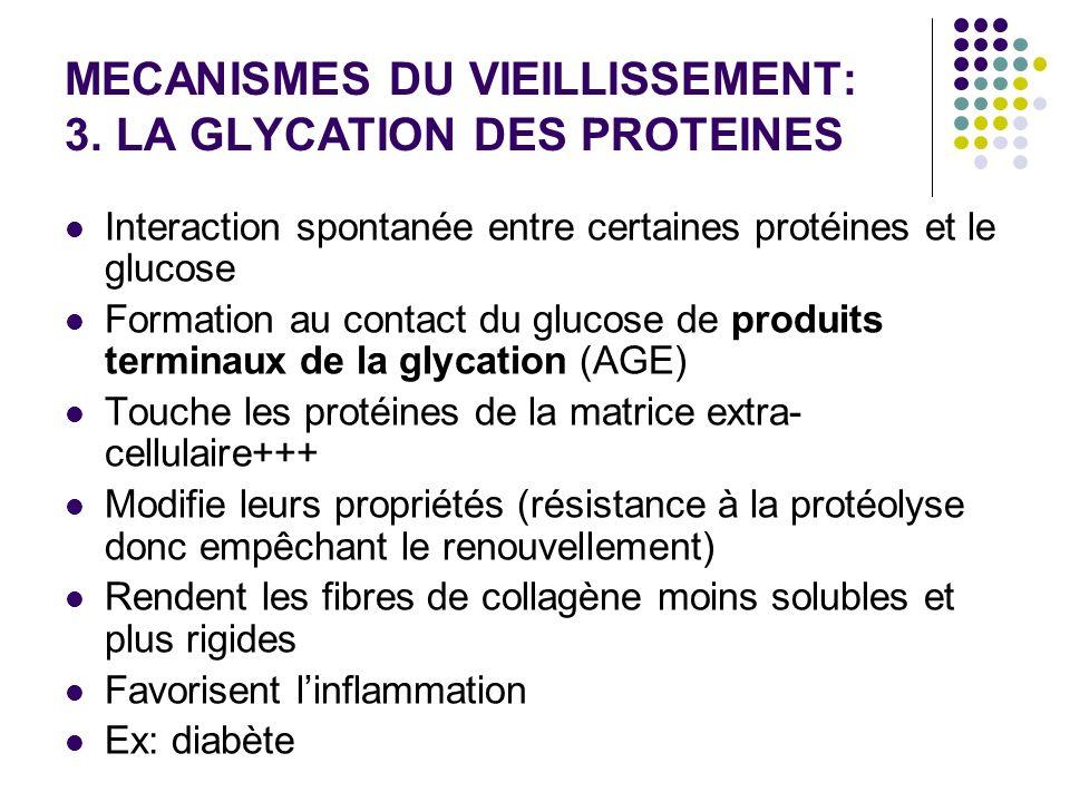 MECANISMES DU VIEILLISSEMENT: 3. LA GLYCATION DES PROTEINES Interaction spontanée entre certaines protéines et le glucose Formation au contact du gluc