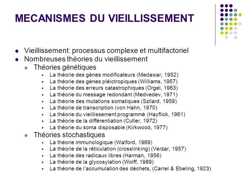 MECANISMES DU VIEILLISSEMENT Vieillissement: processus complexe et multifactoriel Nombreuses théories du vieillissement Théories génétiques La théorie