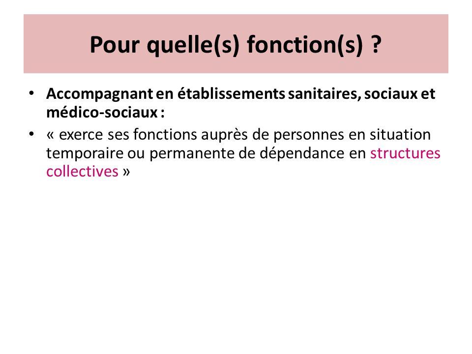 Pour quelle(s) fonction(s) ? Accompagnant en établissements sanitaires, sociaux et médico-sociaux : « exerce ses fonctions auprès de personnes en situ