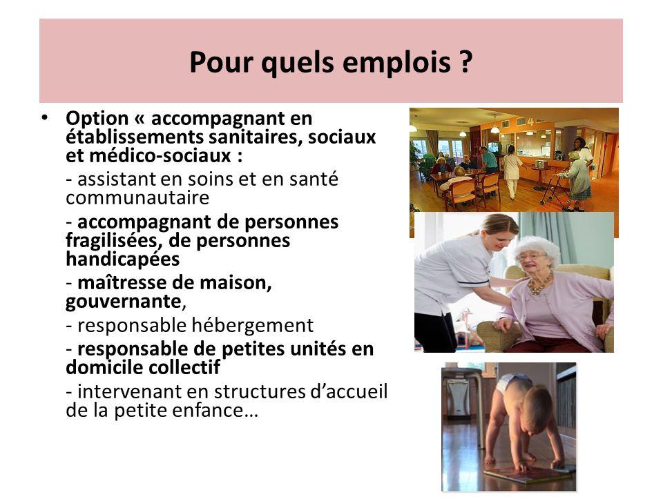 Pour quels emplois ? Option « accompagnant en établissements sanitaires, sociaux et médico-sociaux : - assistant en soins et en santé communautaire -