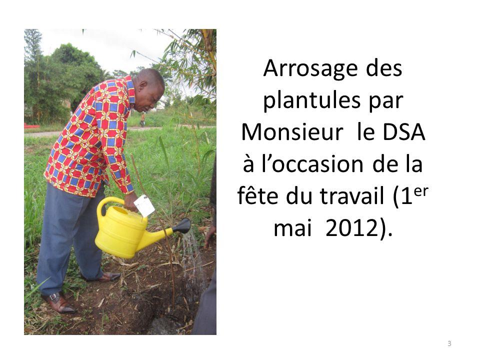 Arrosage des plantules par Madame lADF à loccasion de la fête du travail (1 er mai 2012). 2