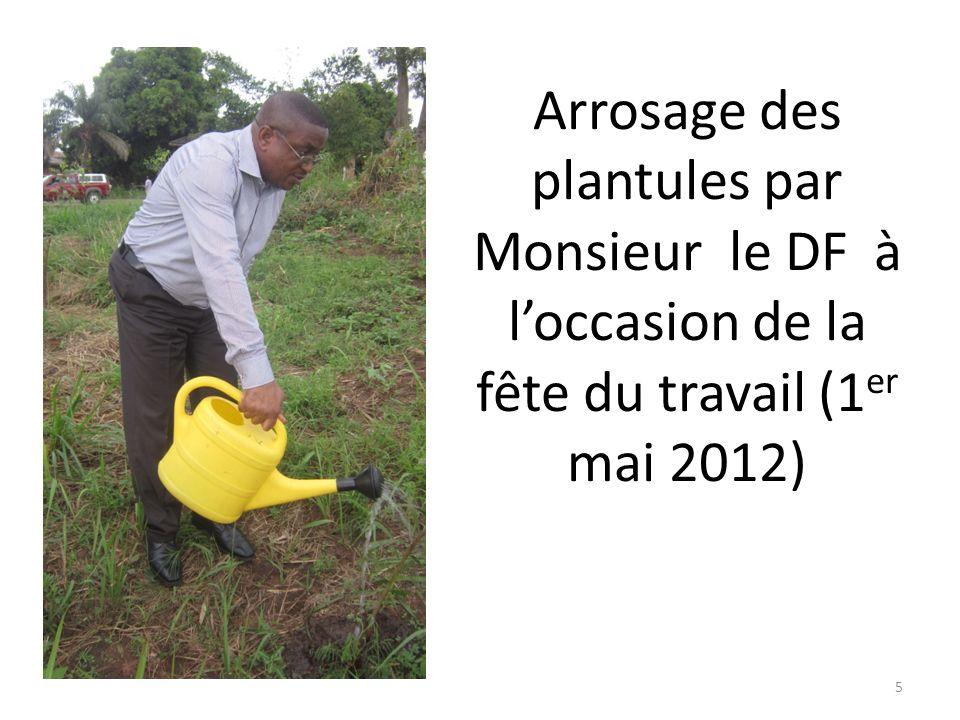Arrosage des plantules par Monsieur le DCTG à loccasion de la fête du travail (1 er mai 2012) 4