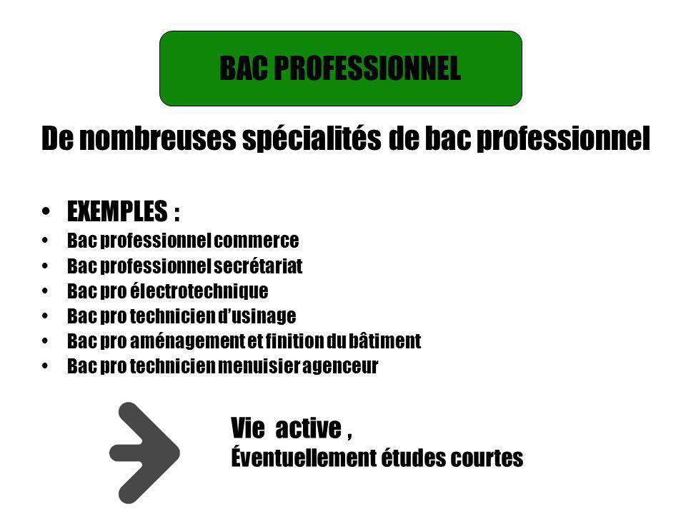 BAC PROFESSIONNEL De nombreuses spécialités de bac professionnel EXEMPLES : Bac professionnel commerce Bac professionnel secrétariat Bac pro électrote