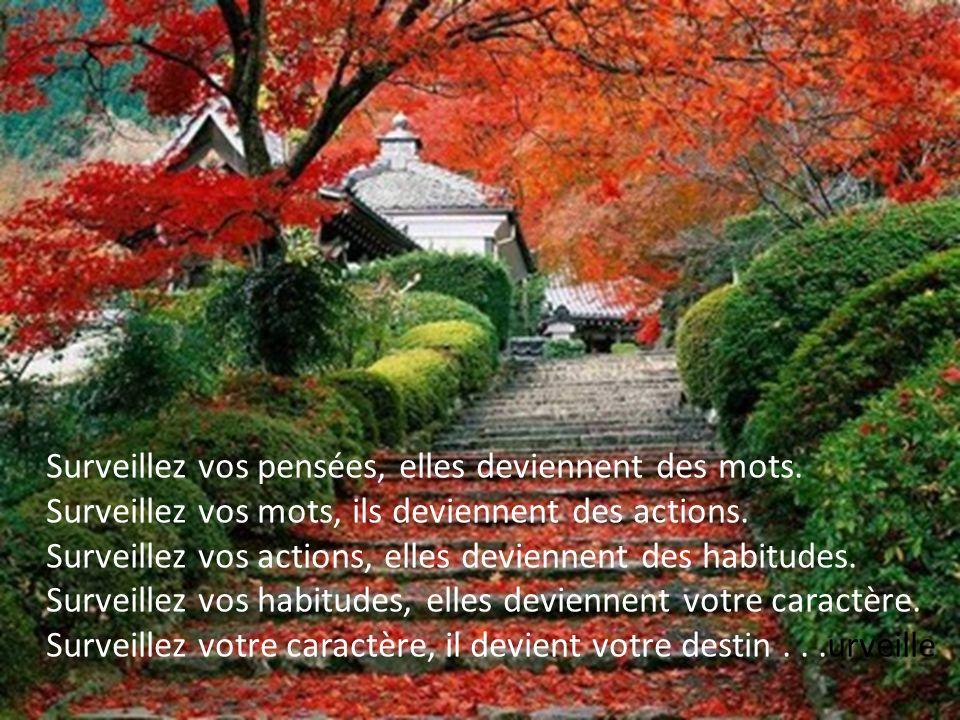 La beauté intérieure est une fleur qui ne cesse de sépanouir, et la beauté extérieure est une fleur qui ne cesse de se faner