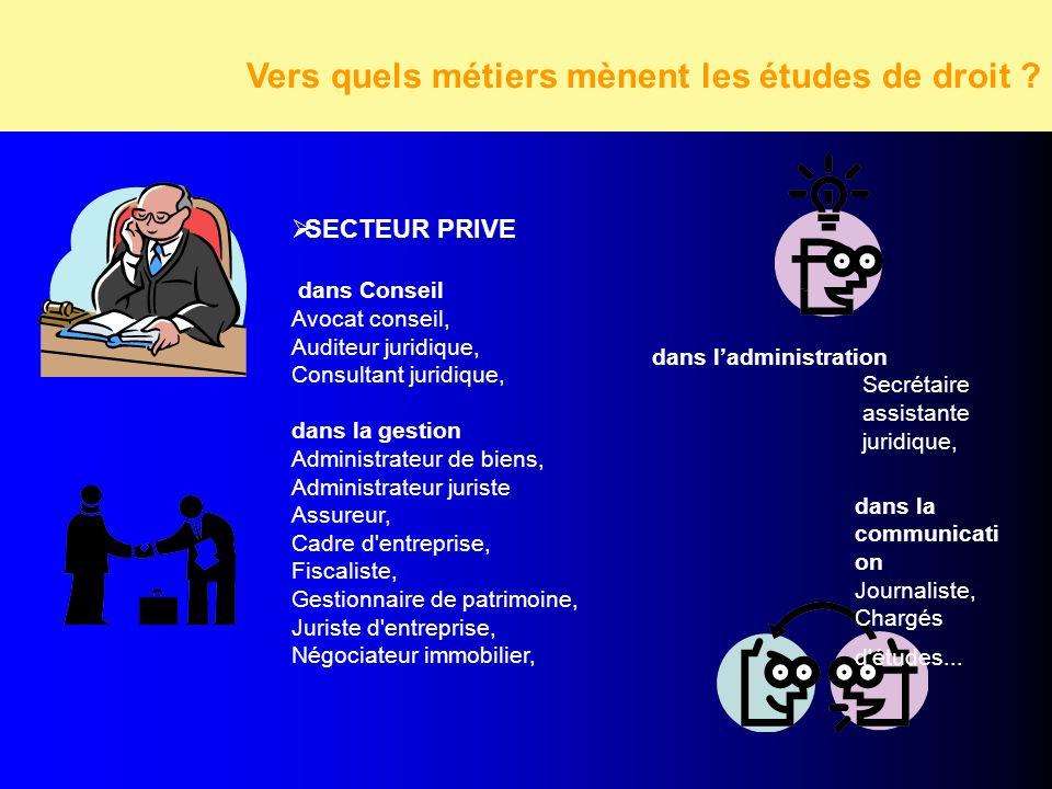 SECTEUR PRIVE dans Conseil Avocat conseil, Auditeur juridique, Consultant juridique, dans la gestion Administrateur de biens, Administrateur juriste A