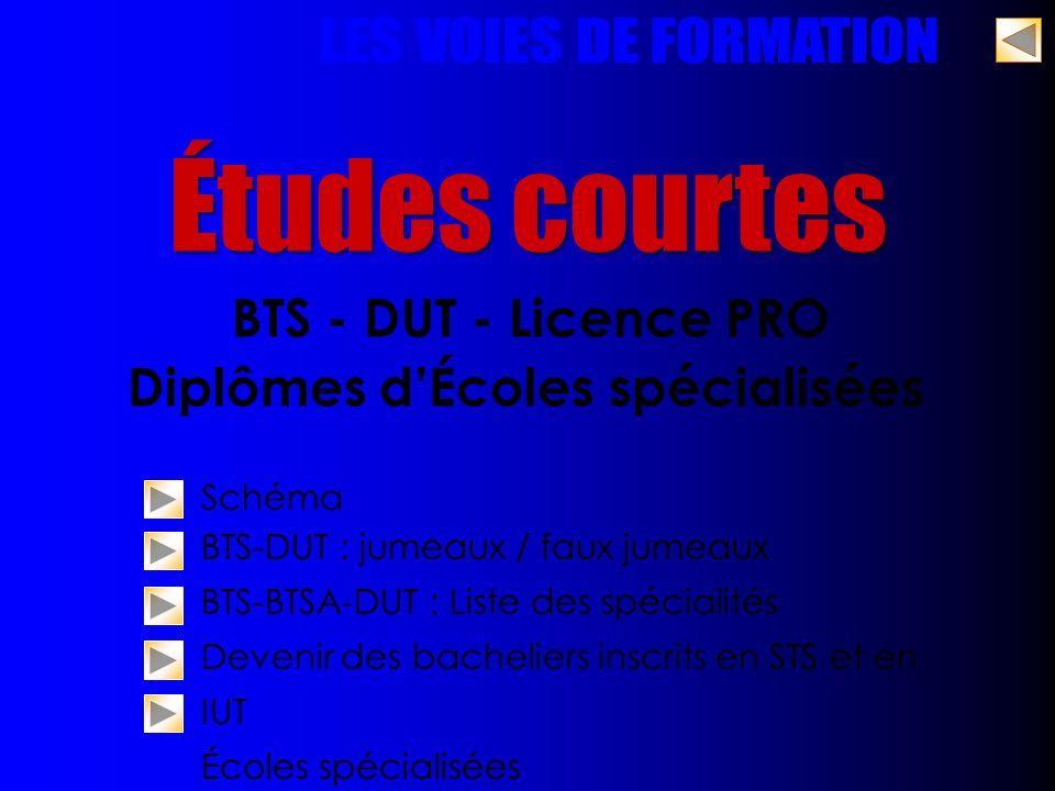 Études courtes BTS - DUT - Licence PRO Diplômes dÉcoles spécialisées Schéma BTS-DUT : jumeaux / faux jumeaux BTS-BTSA-DUT : Liste des spécialités Deve