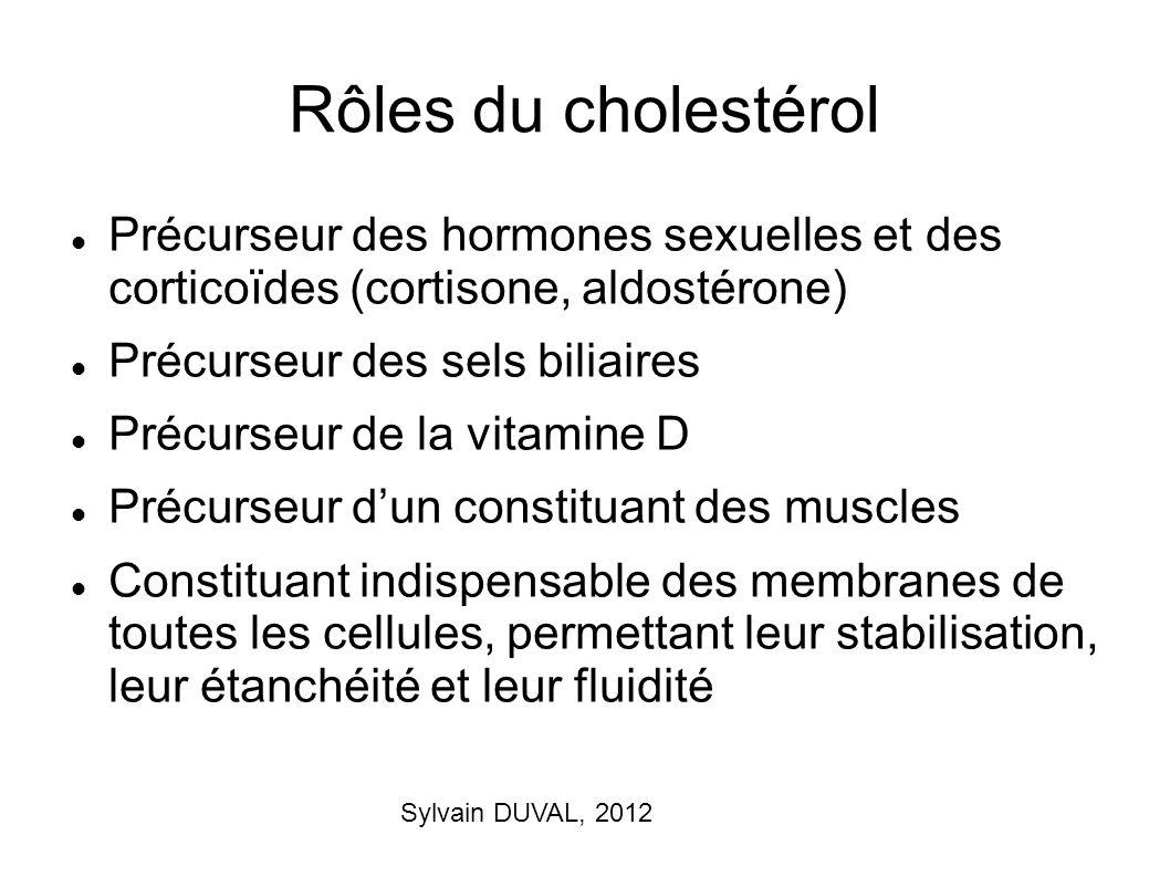 Sylvain DUVAL, 2012 Rôles du cholestérol Précurseur des hormones sexuelles et des corticoïdes (cortisone, aldostérone) Précurseur des sels biliaires P