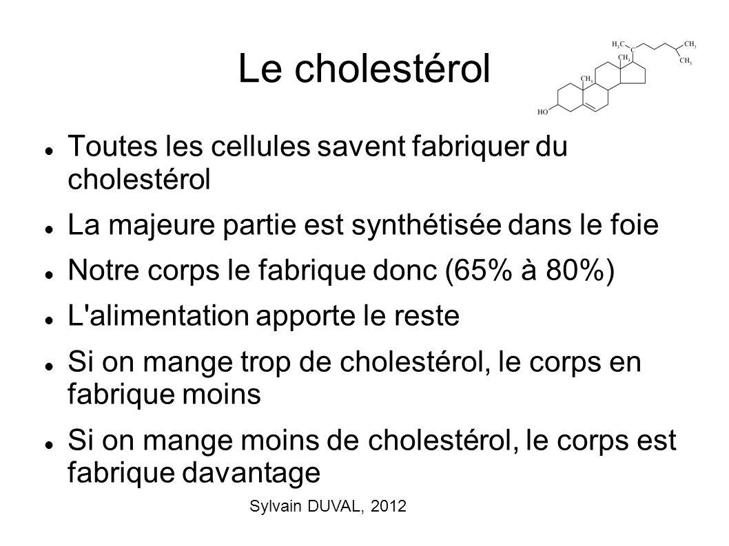 Sylvain DUVAL, 2012 Le cholestérol Toutes les cellules savent fabriquer du cholestérol La majeure partie est synthétisée dans le foie Notre corps le f
