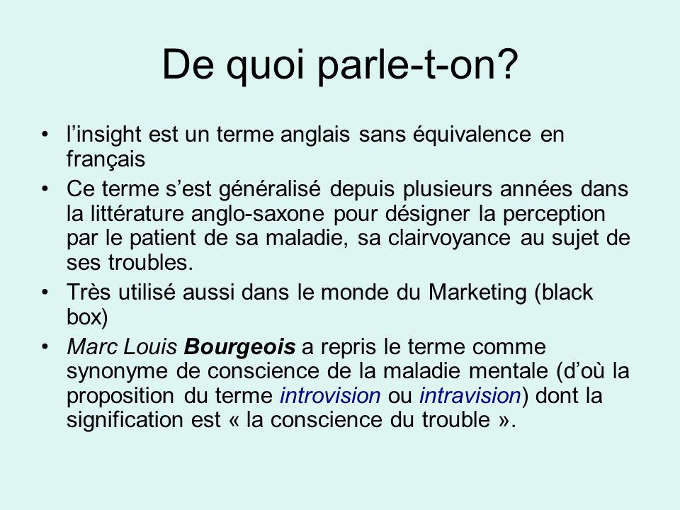 De quoi parle-t-on? linsight est un terme anglais sans équivalence en français Ce terme sest généralisé depuis plusieurs années dans la littérature an
