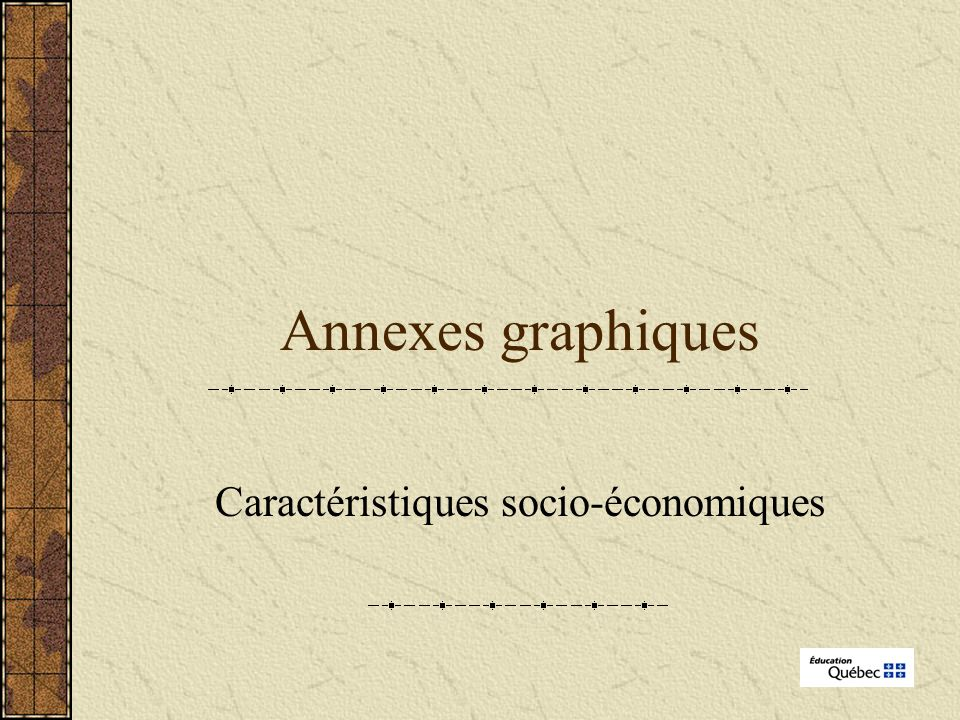 Annexes graphiques Caractéristiques socio-économiques
