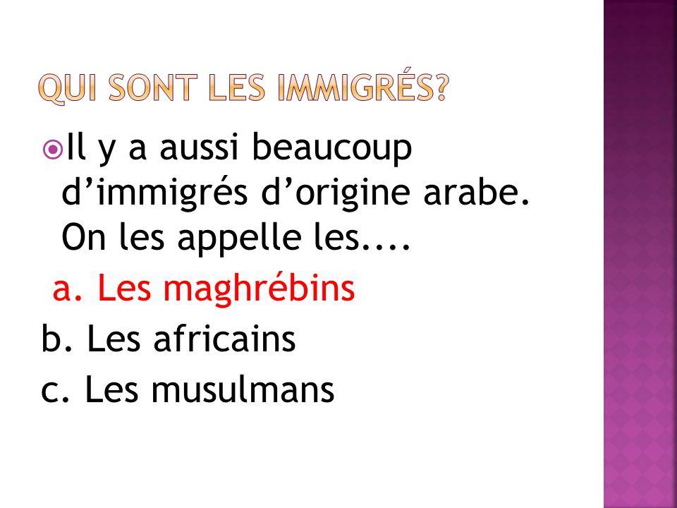Il y a aussi beaucoup dimmigrés dorigine arabe. On les appelle les....