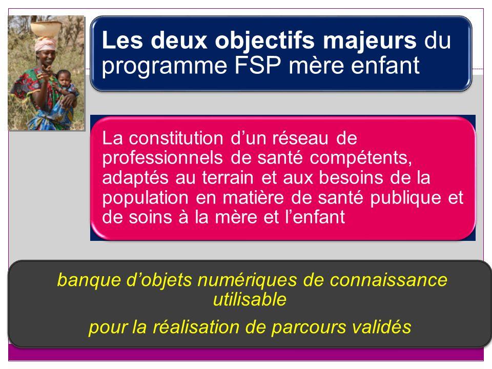 Les deux objectifs majeurs du programme FSP mère enfant La constitution dun réseau de professionnels de santé compétents, adaptés au terrain et aux be