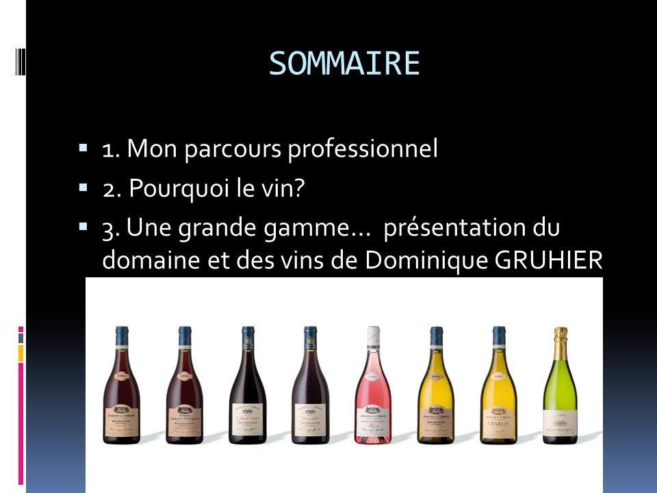 SOMMAIRE 1. Mon parcours professionnel 2. Pourquoi le vin? 3. Une grande gamme… présentation du domaine et des vins de Dominique GRUHIER