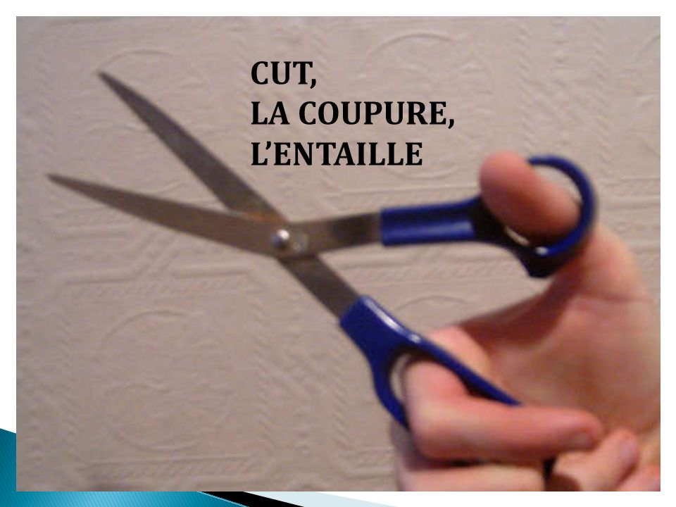 CUT, LA COUPURE, LENTAILLE