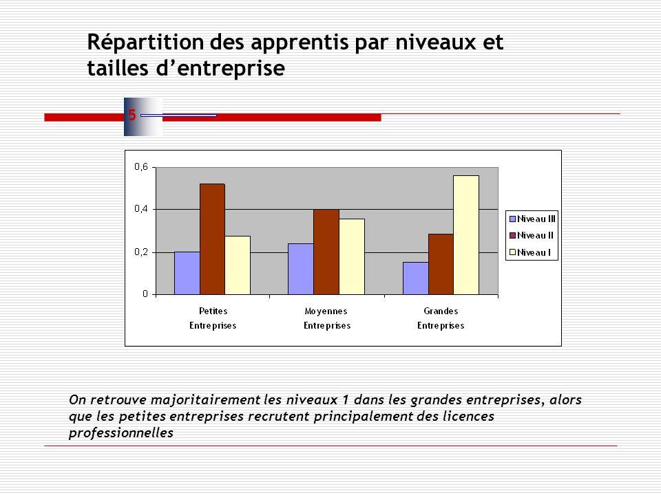 Répartition des apprentis par niveaux et tailles dentreprise On retrouve majoritairement les niveaux 1 dans les grandes entreprises, alors que les petites entreprises recrutent principalement des licences professionnelles 5