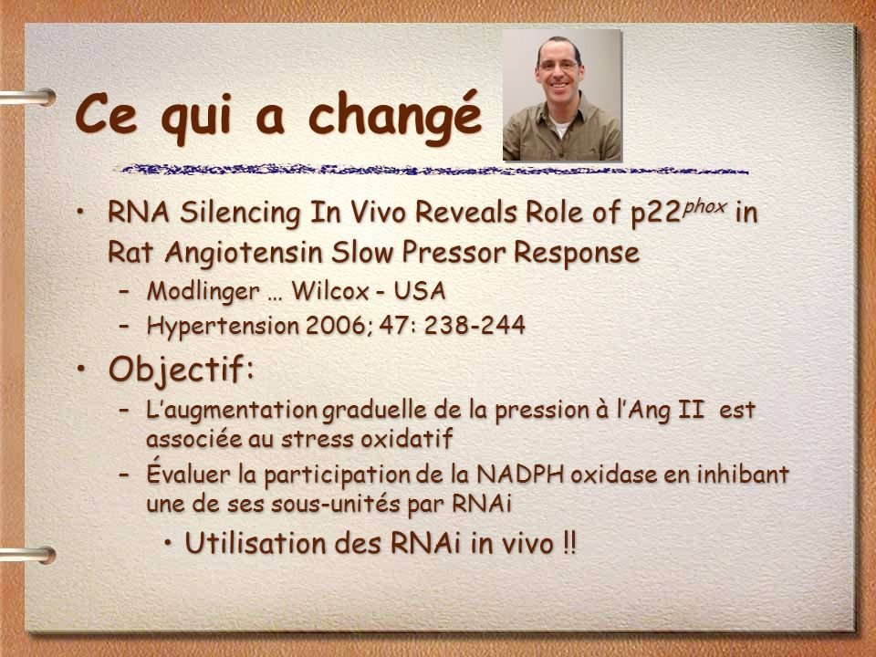 Ce qui a changé RNA Silencing In Vivo Reveals Role of p22 phox in Rat Angiotensin Slow Pressor Response –Modlinger … Wilcox - USA –Hypertension 2006;
