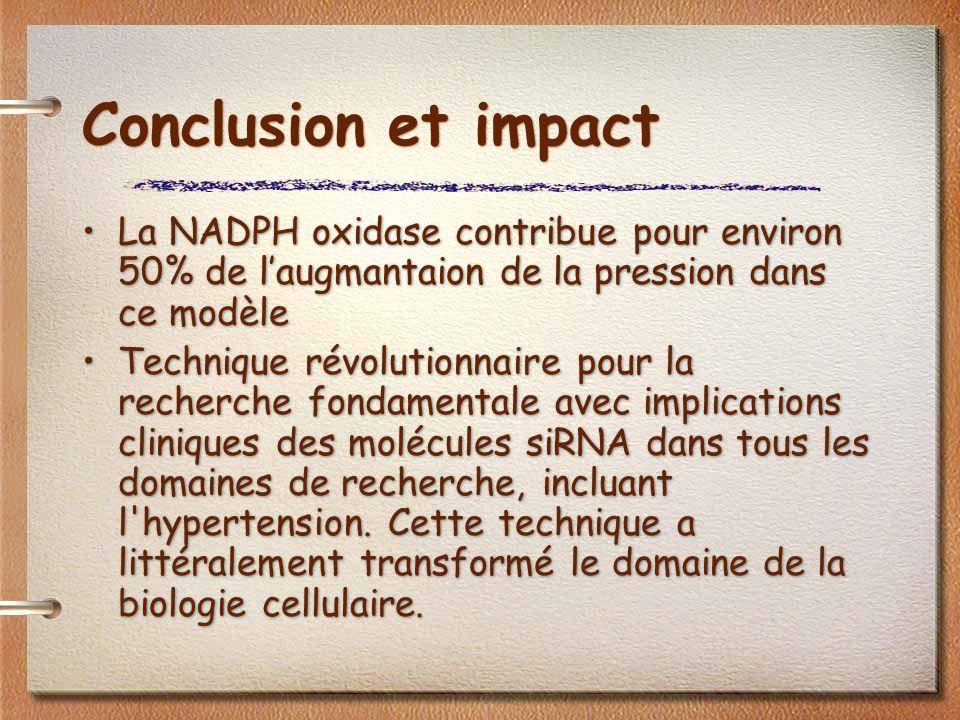 Conclusion et impact La NADPH oxidase contribue pour environ 50% de laugmantaion de la pression dans ce modèle Technique révolutionnaire pour la recherche fondamentale avec implications cliniques des molécules siRNA dans tous les domaines de recherche, incluant l hypertension.