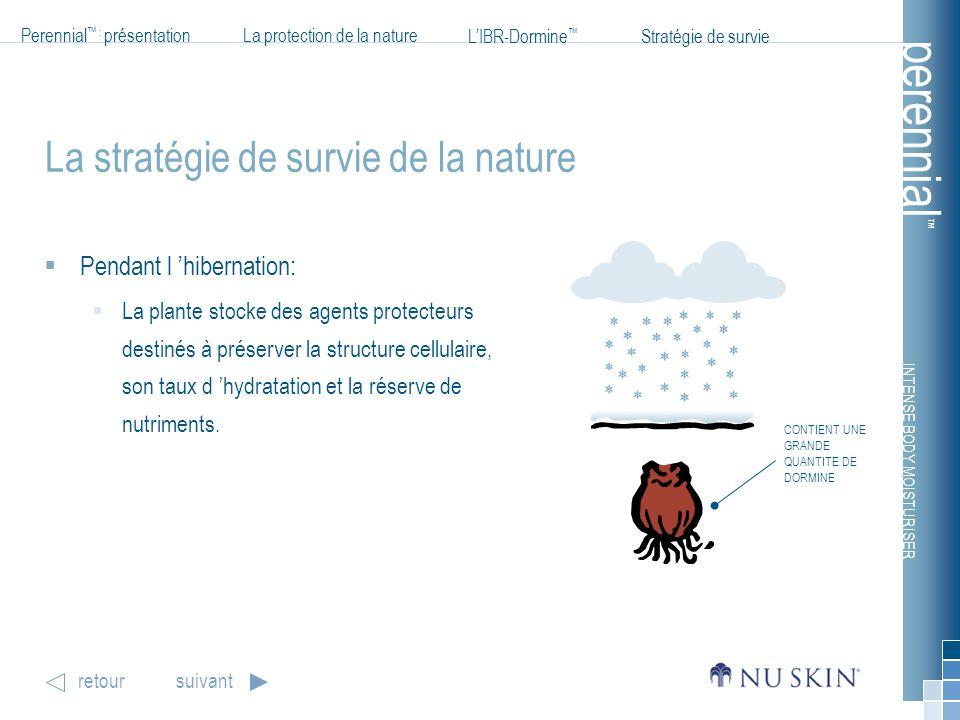 INTENSE BODY MOISTURISER Perennial : présentationLa protection de la nature LIBR-Dormine Stratégie de survie perennial retoursuivant La stratégie de s