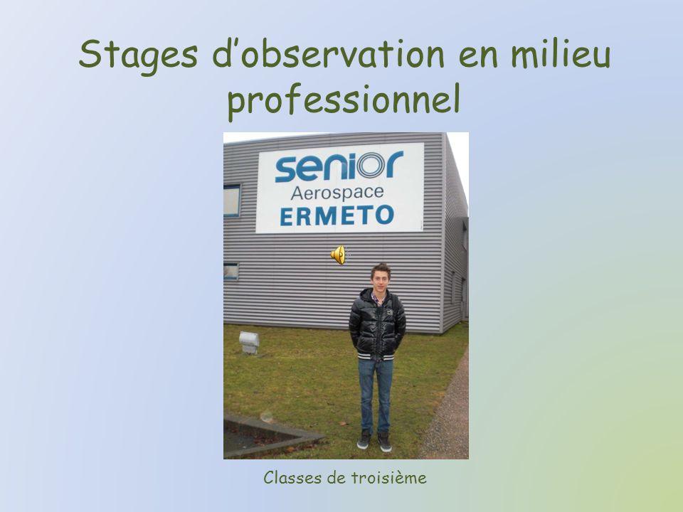 Stages dobservation en milieu professionnel Classes de troisième