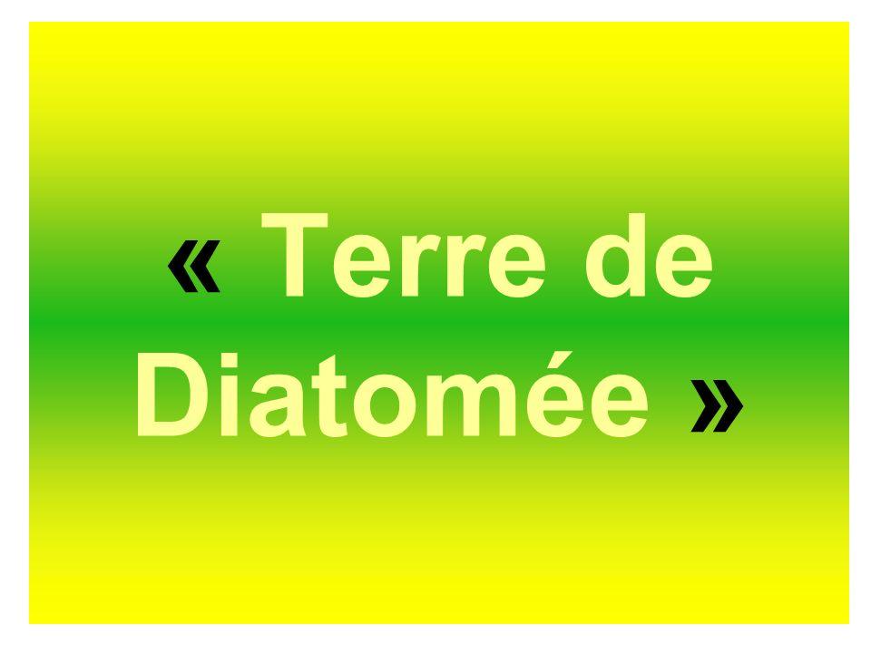 « Terre de Diatomée »