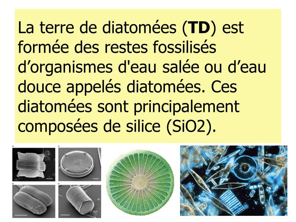 La terre de diatomées (TD) est formée des restes fossilisés dorganismes d'eau salée ou deau douce appelés diatomées. Ces diatomées sont principalement