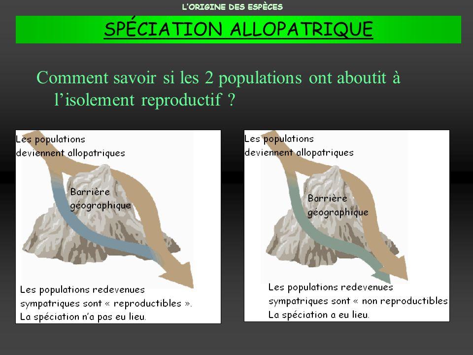 Comment savoir si les 2 populations ont aboutit à lisolement reproductif ? LORIGINE DES ESPÈCES SPÉCIATION ALLOPATRIQUE